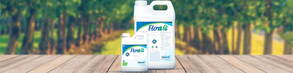 como-o-FlorVit+-contribui-com-o-crescimento-de-brotos